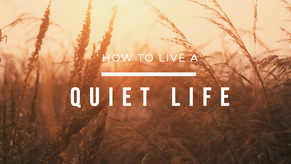 How to live a quiet life