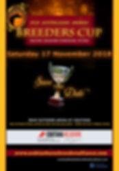 Australasian Arabian Breeders Cup - Equitana Melbourne