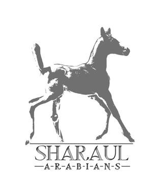 SHARAUL SHORT silver LOGO CHARMAINE.jpg