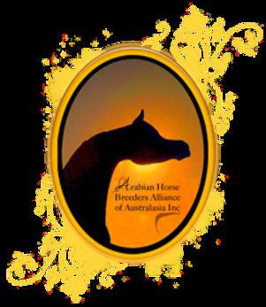 Arabian Horse Breeders Alliance of Australasi