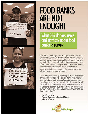 Food Banks Are Not Enough - Survey Report