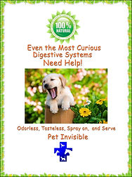 private label dog probiotics| dog supplements private label