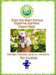 private label dog pet cat probiotic supplements