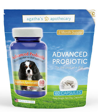 Private Label Dog  Probioticss| Private Label Dog Supplements