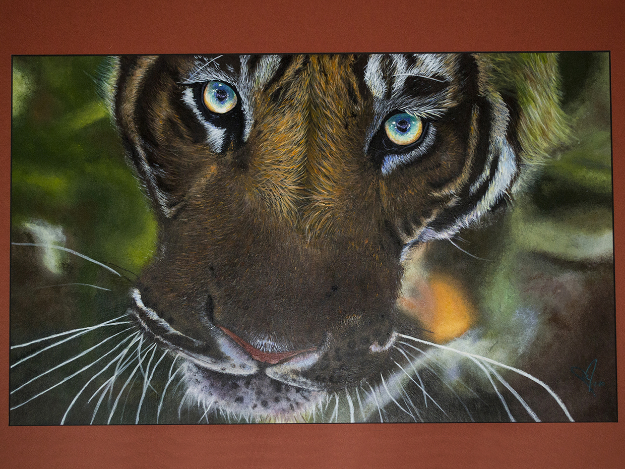 Tiger Innocence- Acrylic Paint