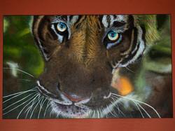 Tiger Innocence- Acrylic Paint