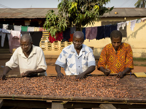 A tasty new partnership – Free Chocolate!