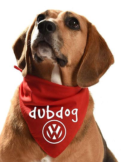 Dub Dog.jpg