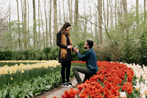 Proposal Photography at Keukenhof (1).jp