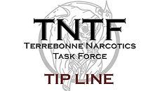 TNTF logo BUTTON.jpg