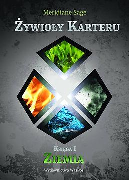 zywioly-front-732x1024.jpg