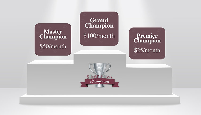 Champion Levels-01.jpg