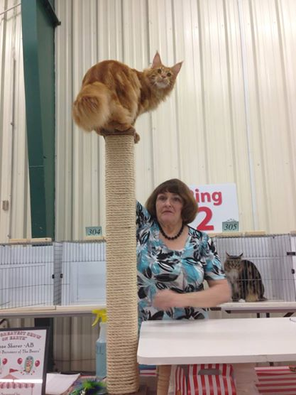 J, the Pole Dancer