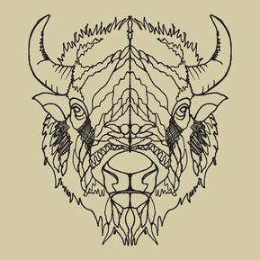 Illustration for apparel