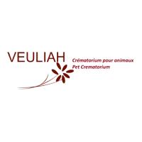 logo de Veuliah