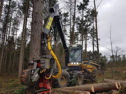 Home Forestry llp  Ecolog 590C