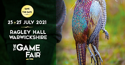 the game fair image.png
