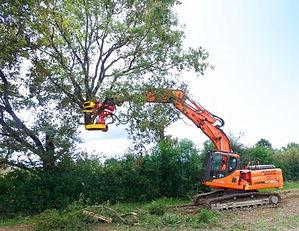 Rabad Xylocut 400 tree shear, tree shear, excavator tree shear,