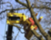 Rabaud xylocut 300 tree shear