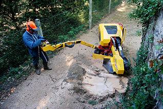 Rabaud tracked stump grinder
