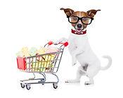 Mein neuer Partner Hund Shop
