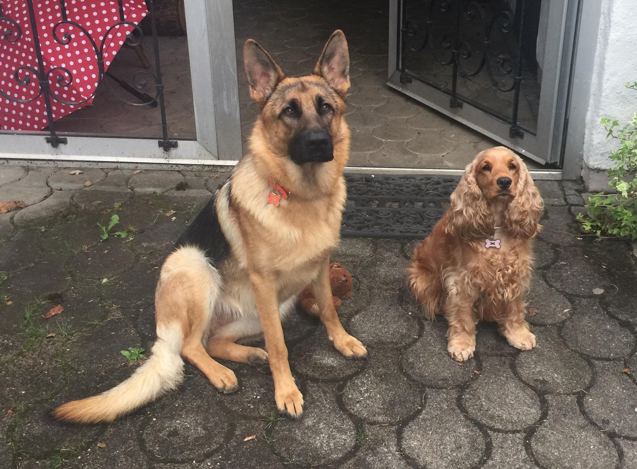 Kira & Pucket