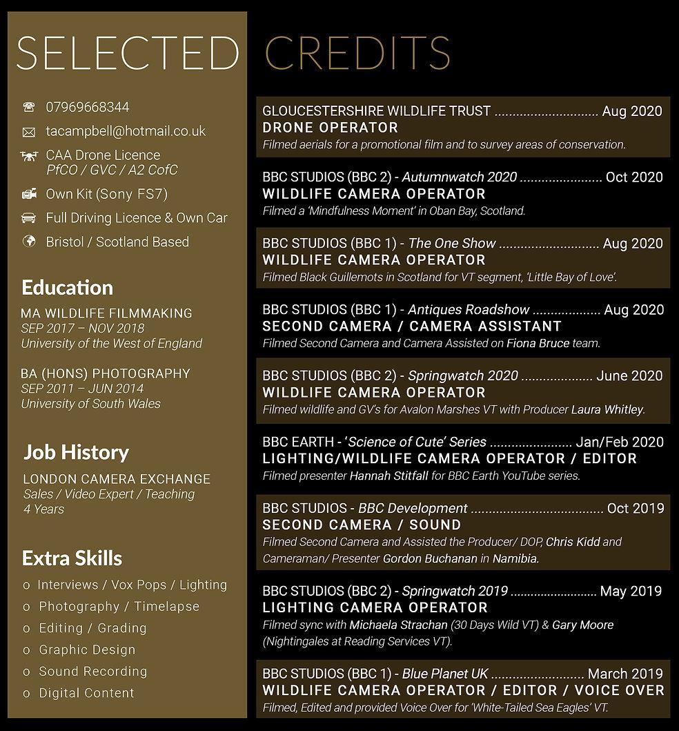 CV 2020 for website.jpg