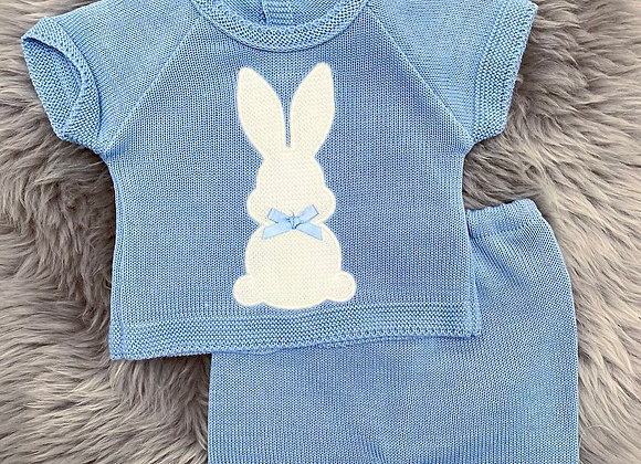 Blue Bunny 2 Piece