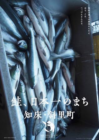 美味しくて、美しい魚、鮭