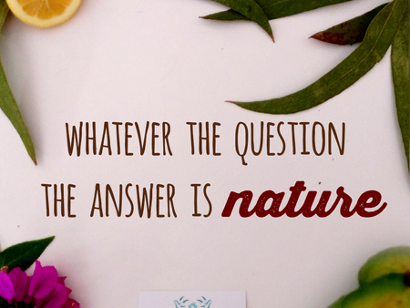Whatever the question, the answer is nature