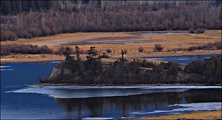 Wetlands in Blue #2.jpg