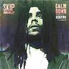 SKIP MARLEY - CALM DOWN (ACOUSTIC) - MIXER