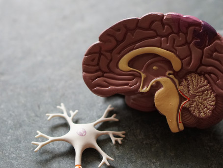 Inflammation and Alzheimer's Disease