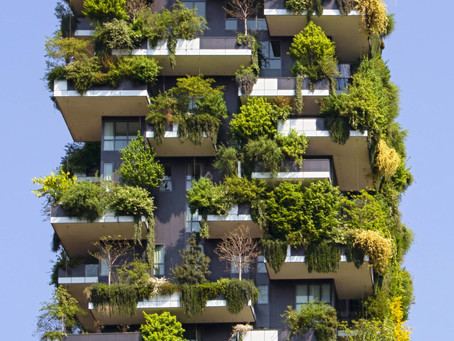 Solarpunk and a Sustainable Civilization -- By Sharon Burch, APRN