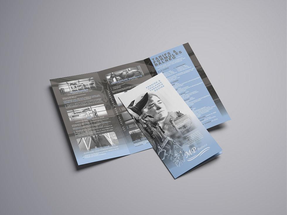 PBALNEO_Tri-Fold Brochure Mockup -05.jpg