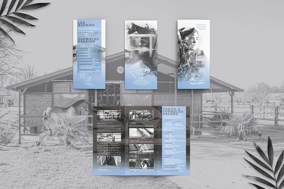 MPBALNEO_Free Trifold Brochure Mockup2.j