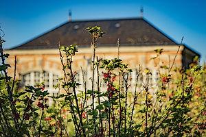 ardenay_parcs,jardin&potager__1.jpg