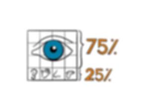 Visuele_Informatieverwerking.jpg