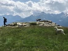Lunedì 1. giugno 2020 Passeggiata picnic & mindfulness a Carì