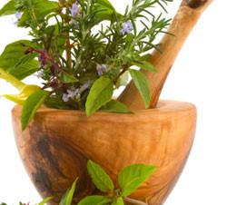 Why Adaptogen Herbs?