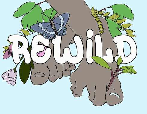 Resized_1618592630324_rewild_2_logo.jpeg