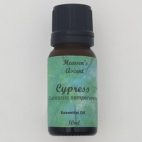 Cypress - Pure Therapeutic Essential Oil 10ml