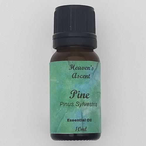 Pine - Pure Therapeutic Essential Oil 10ml