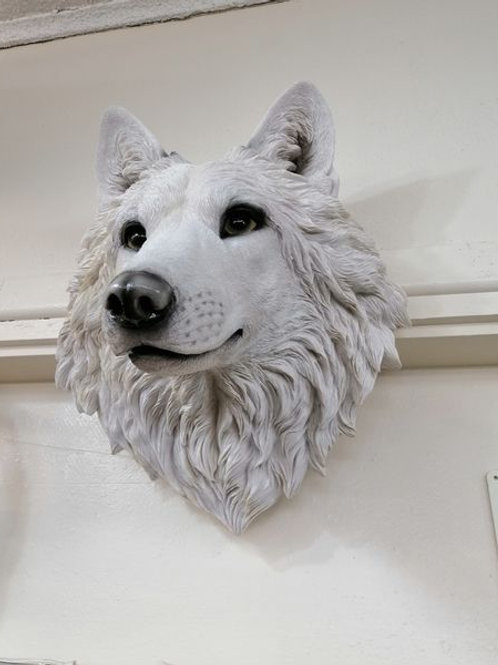 Wolf Head Wall Art