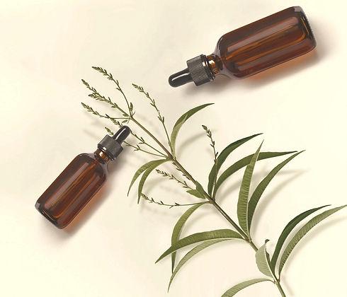 Aromaterapia-Plantas-Medicinales-Fitoter