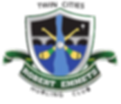 Twin Cities Robert Emmets Hurling Club logo