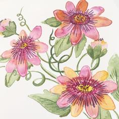 passionflowers.jpg