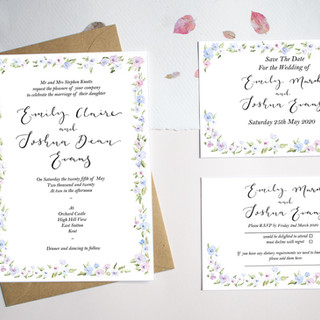 Blue and Pink floral border invites- House design