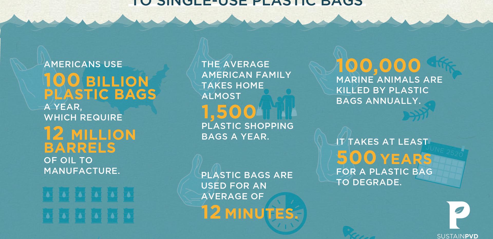 Plastic Bag Ban Inofgraphic