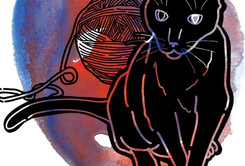 mr.kitty v1